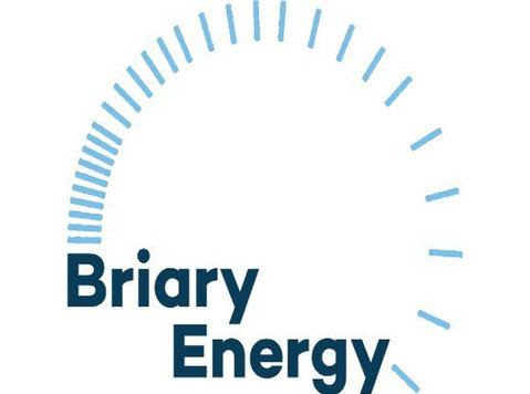 Briary Energy - Consultancy