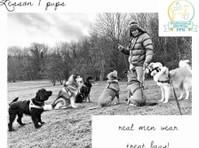 Snack Leader Dog Training (1) - Pet services
