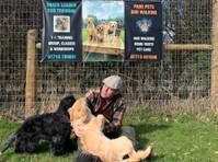 Snack Leader Dog Training (2) - Pet services