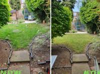 City Gardeners North London (4) - Gardeners & Landscaping