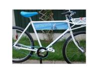 Salt Dog Cycling (1) - Bikes, bike rentals & bike repairs