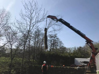 Total Tree Services (3) - Gardeners & Landscaping
