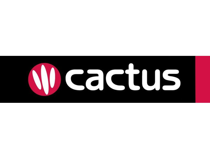 Cactus Language - Language schools