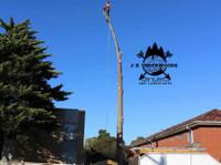 J K Underwoods Tree & Garden Services (7) - Gardeners & Landscaping