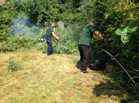 Alpha Garden Team (1) - Gardeners & Landscaping