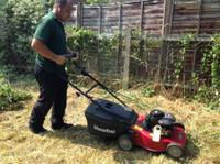 Alpha Garden Team (2) - Gardeners & Landscaping