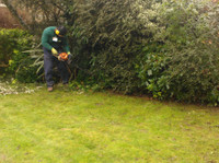 Alpha Garden Team (3) - Gardeners & Landscaping