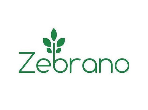 Zebrano Rattan Furniture - Furniture