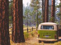 campervanhire.com (8) - Camping & Caravan Sites