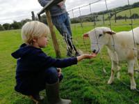 Higher Culloden Farm (6) - Holiday Rentals