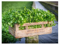 The Watercress Company (2) - Organic food
