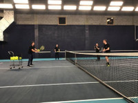 Aceify (4) - Tennis, Squash & Racquet Sports