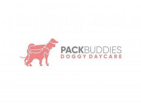 Pack Buddies Doggy Daycare Southampton - Pet services