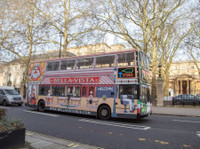 Bella Vista Bus (1) - City Tours