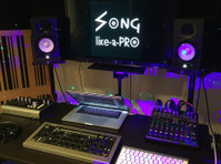 Song Like A Pro (2) - Music, Theatre, Dance