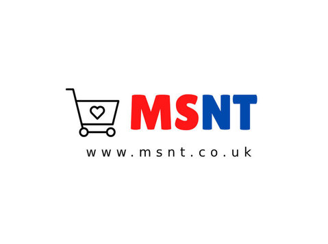Msnt Ltd - Company formation