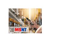 Msnt Ltd (1) - Company formation