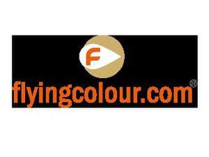 flyingcolour business setup services - Company formation