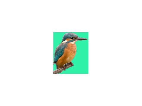 Tonbridge River Trips - Ferries & Cruises