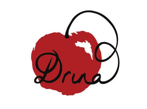 Drina - Webdesign
