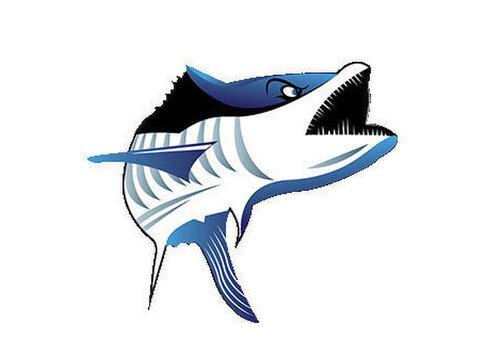 Kingfish Adventures - Fishing & Angling