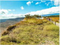 Hawaii Tours (1) - Travel Agencies