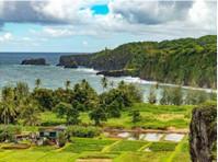 Hawaii Tours (3) - Travel Agencies