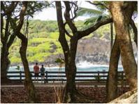 Road To Hana Tours (1) - Travel Agencies