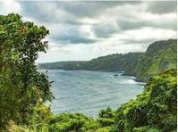 Road To Hana Tours (2) - Travel Agencies