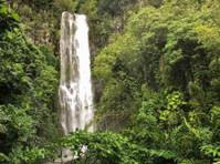Road To Hana Tours (3) - Travel Agencies