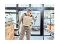 System4 IPS (2) - Cleaners & Cleaning services