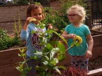 Howell Branch Academy (5) - Nurseries
