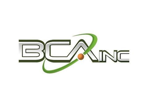 BCA IT, Inc. - Company formation