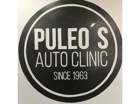 Puleo's Auto Clinic - Car Repairs & Motor Service