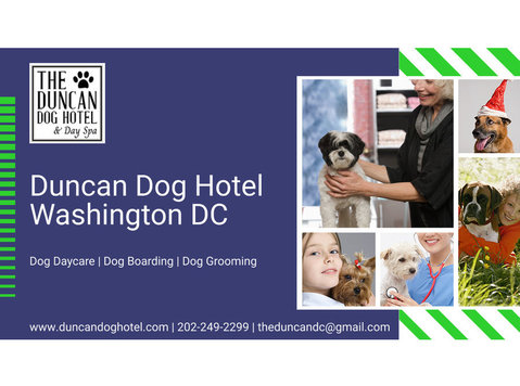 The Dancan Dog Hotel & Day Spa - Hotels & Hostels