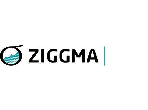 Ziggma Analytics, Inc - Financial consultants