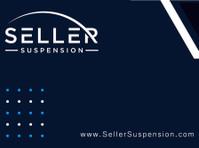 Seller Suspension (1) - Consultancy