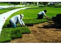 Dawn To Dusk Landscape (2) - Gardeners & Landscaping