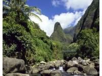 Maui Legend Tours (2) - City Tours