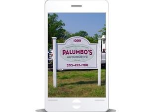 Palumbo's Automotive Unlimited - Public Transport