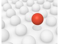 Qualityze Inc (3) - Business Accountants