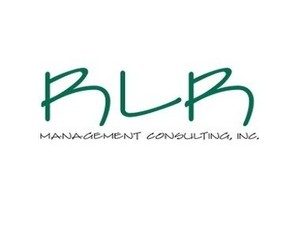 RLR Management Consulting Inc. - Financial consultants