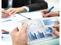 Premier Business Services Inc (4) - Financial consultants
