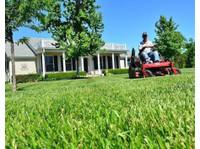 Cda Lawn Care (2) - Gardeners & Landscaping