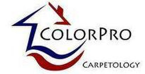 COLORPRO CARPETOLOGY - Cleaners & Cleaning services