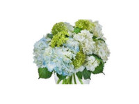 Johnston's Quality Flowers Inc. (3) - Gifts & Flowers