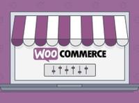 Weismann Web LLC (2) - Webdesign
