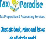 Tax Paradise (1) - Tax advisors