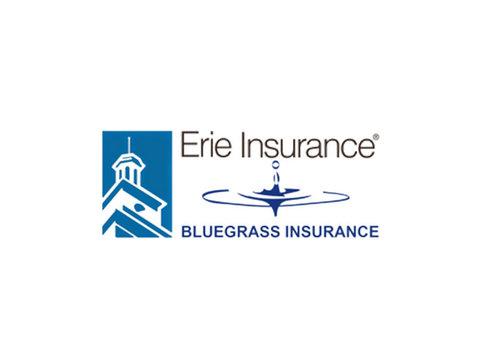 Bluegrass Insurance - Insurance companies