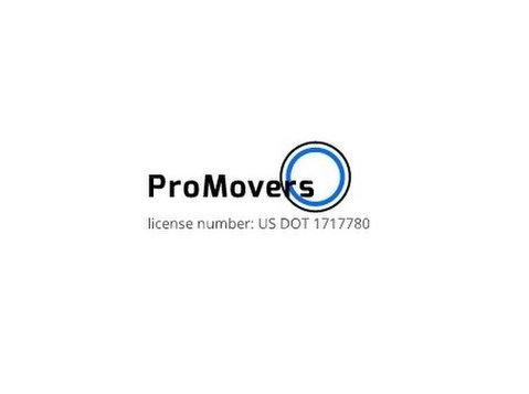 Pro Miami Movers - Storage